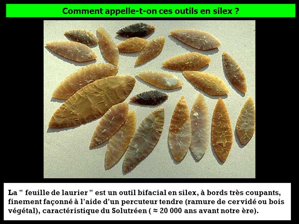 Comment appelle-t-on ces outils en silex ? (fabriqués par lHomme de Cro-Magnon) Feuille de laurierLame de rasoirBiface acheuléen