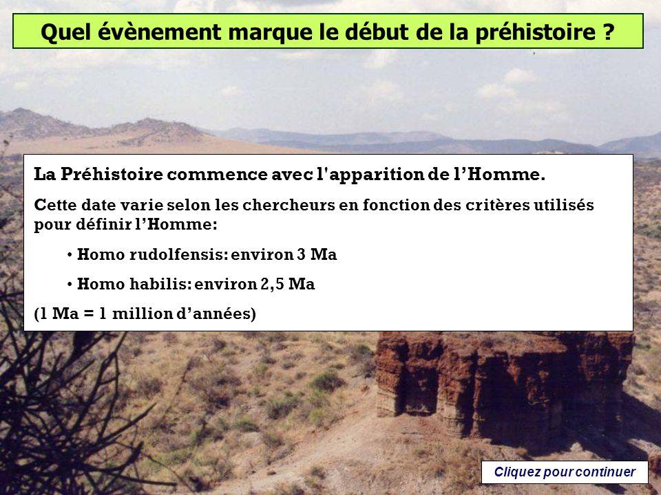 Homo sapiens (lhomme moderne) serait apparu en Afrique il y environ 200 000 ans (Théorie: Out of Africa).