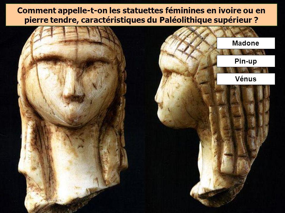 LHomme de Cro-Magnon utilisait des propulseurs en bois, en os ou en ivoire. Ils étaient souvent richement décorés.