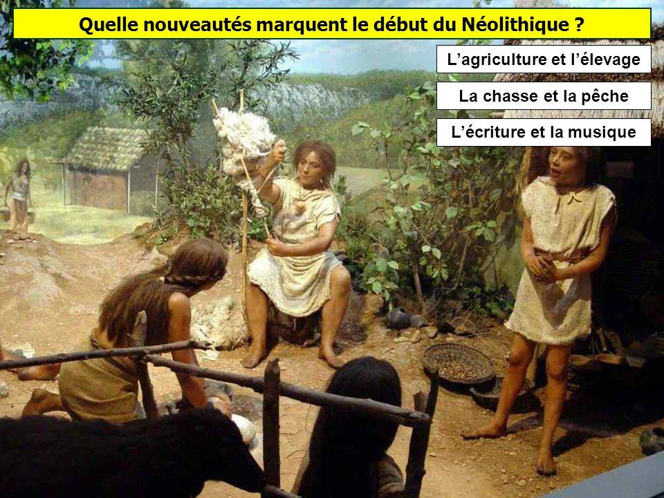 Les Vénus de la préhistoire (Paléolithique supérieur) Vénus de BrassempouyVénus de Dolní VěstoniceVénus de Willendorf