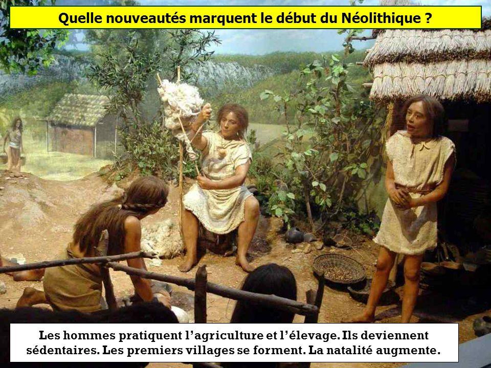 Quelle nouveautés marquent le début du Néolithique ? Lagriculture et lélevage La chasse et la pêche Lécriture et la musique