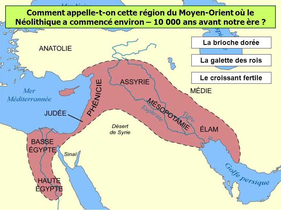 Quelle nouveautés marquent le début du Néolithique ? Les hommes pratiquent lagriculture et lélevage. Ils deviennent sédentaires. Les premiers villages