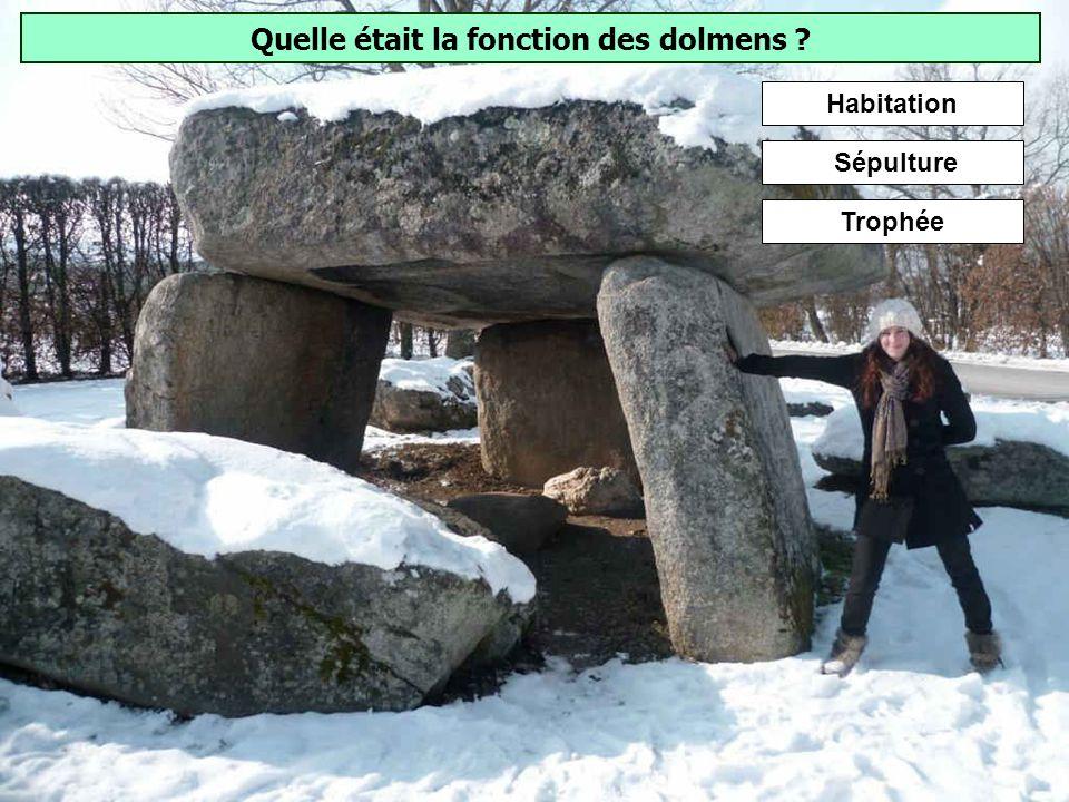 De quand datent les menhirs et dolmens européens ? Contrairement aux idées reçues, les dolmens et menhirs ne sont pas lœuvre des gaulois, mais des hom