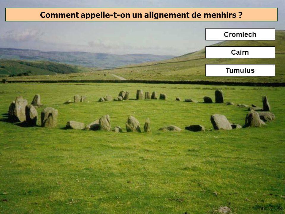 Quelle était la fonction des dolmens ? Les dolmens sont généralement interprétés comme des monuments funéraires ayant abrité des sépultures collective