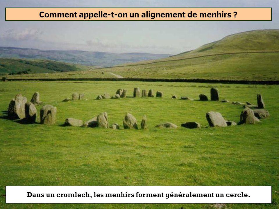 Comment appelle-t-on un alignement de menhirs ? Cromlech Cairn Tumulus