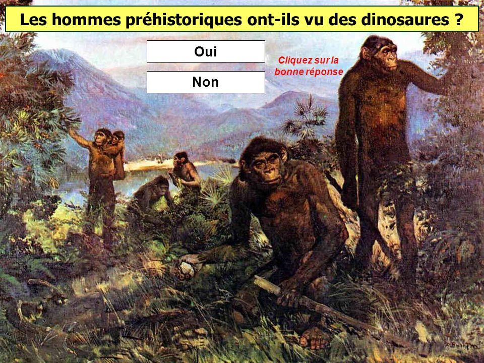 Homme de Cro-Magnon Homme de Neandertal Homme de Tautavel Quel homme préhistorique vivait à la Caune de lArago (Pyrénées-Orientales) il y a 450 à 300 000 ans ?