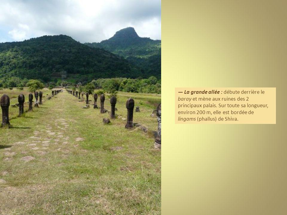La grande allée : débute derrière le baray et mène aux ruines des 2 principaux palais.