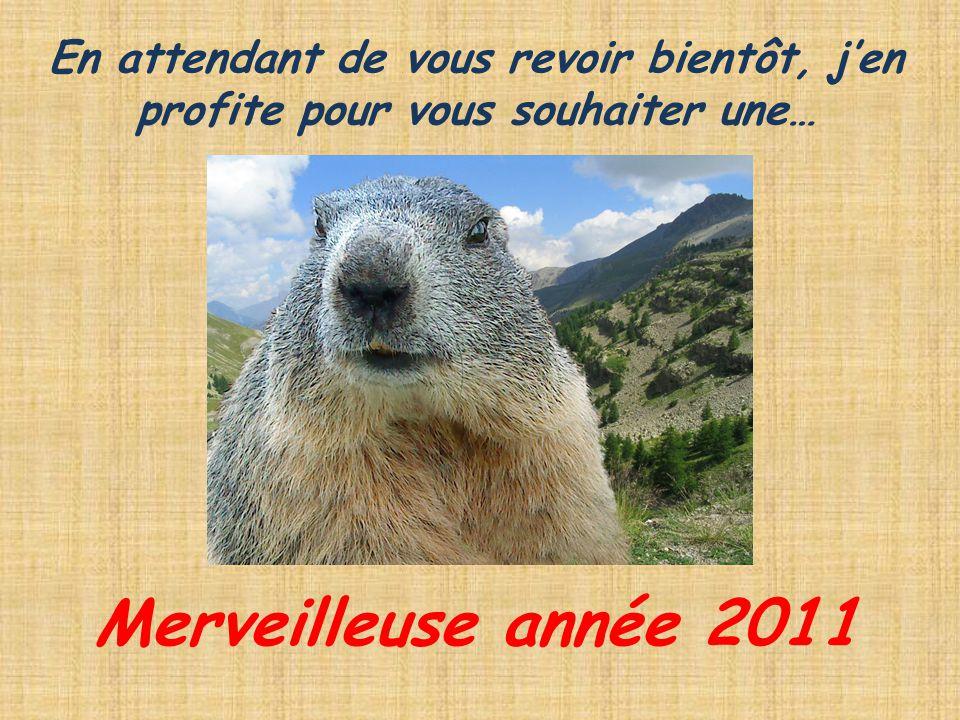 En attendant de vous revoir bientôt, jen profite pour vous souhaiter une… Merveilleuse année 2011