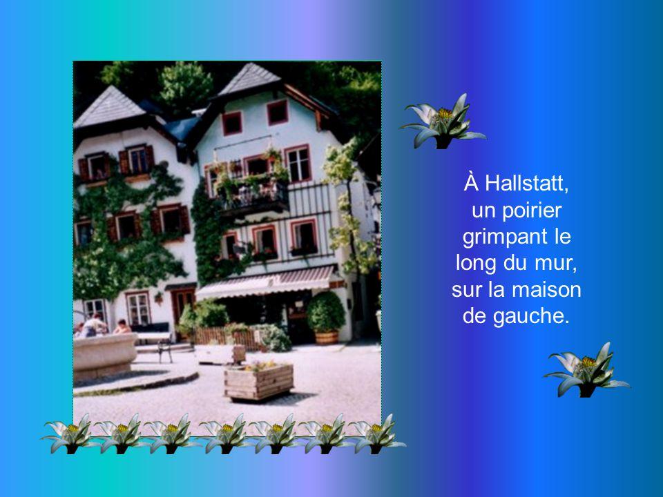 Hallstatt, ce village offre une image romantique de lAutriche