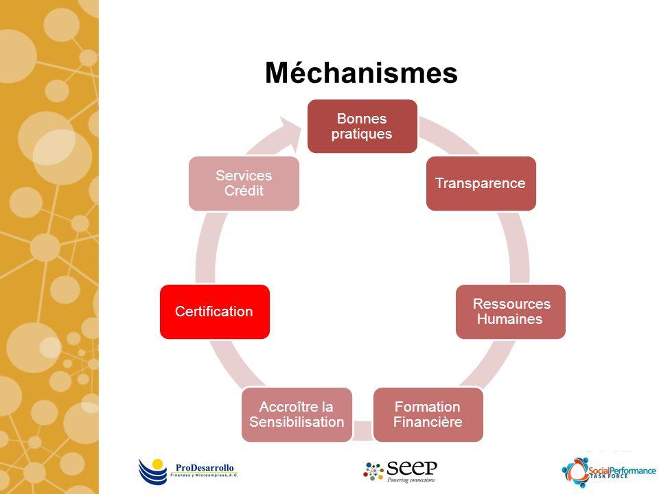 Méchanismes Bonnes pratiques Transparence Ressources Humaines Formation Financière Accroître la Sensibilisation Certification Services Crédit