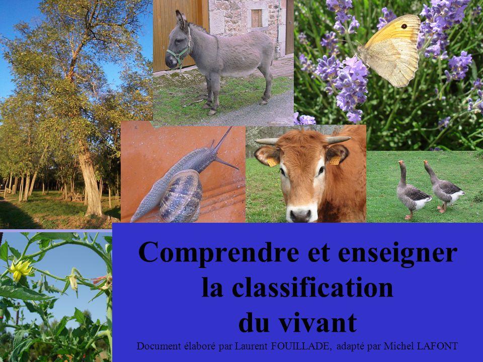 Comprendre et enseigner la classification du vivant Document élaboré par Laurent FOUILLADE, adapté par Michel LAFONT