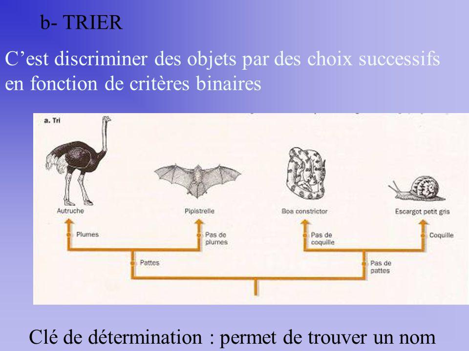 b- TRIER Cest discriminer des objets par des choix successifs en fonction de critères binaires Clé de détermination : permet de trouver un nom