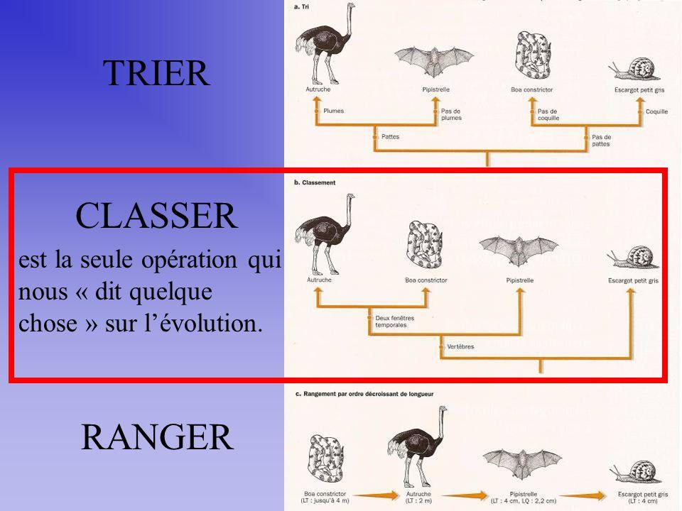 TRIER CLASSER RANGER est la seule opération qui nous « dit quelque chose » sur lévolution.