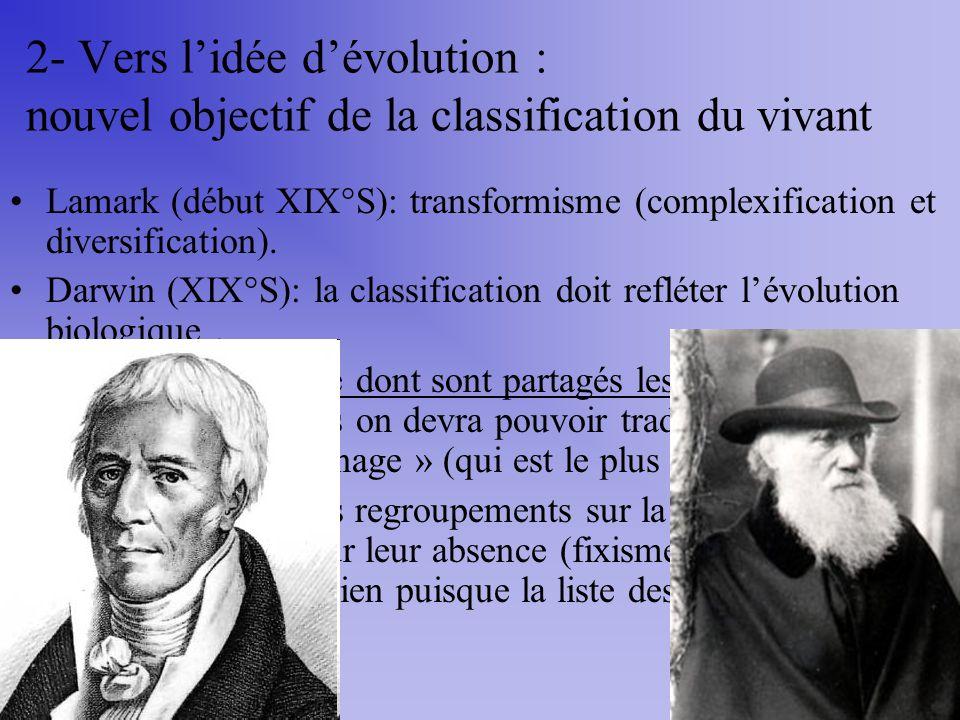 2- Vers lidée dévolution : nouvel objectif de la classification du vivant Lamark (début XIX°S): transformisme (complexification et diversification). D