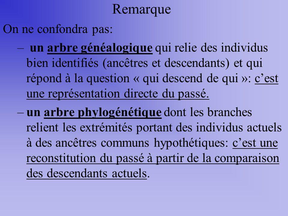 Remarque On ne confondra pas: – un arbre généalogique qui relie des individus bien identifiés (ancêtres et descendants) et qui répond à la question «