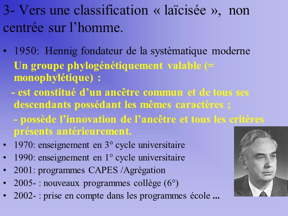 3- Vers une classification « laïcisée », non centrée sur lhomme. 1950: Hennig fondateur de la systèmatique moderne Un groupe phylogénétiquement valabl