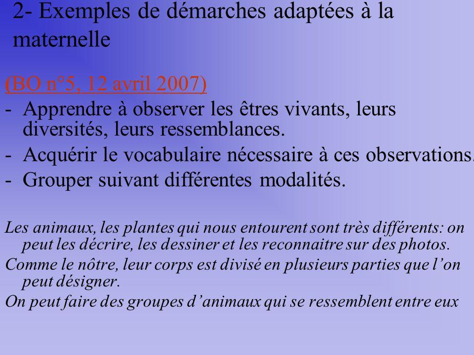 2- Exemples de démarches adaptées à la maternelle (BO n°5, 12 avril 2007) -Apprendre à observer les êtres vivants, leurs diversités, leurs ressemblanc