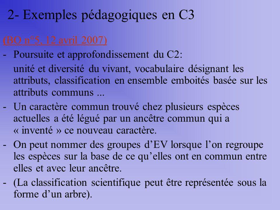 (BO n°5, 12 avril 2007) -Poursuite et approfondissement du C2: unité et diversité du vivant, vocabulaire désignant les attributs, classification en en