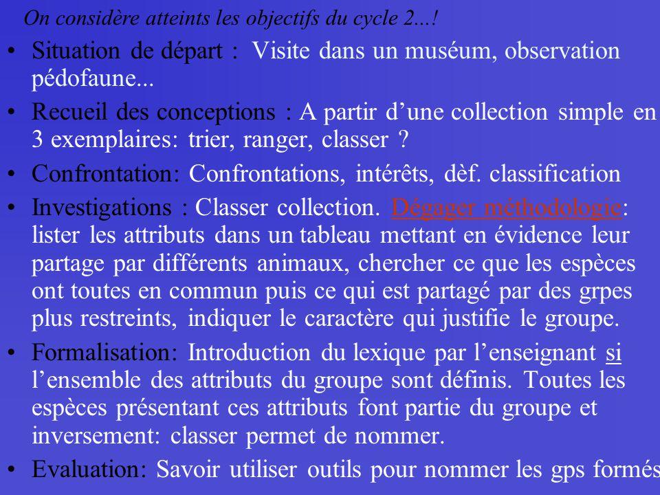 Situation de départ : Visite dans un muséum, observation pédofaune... Recueil des conceptions : A partir dune collection simple en 3 exemplaires: trie