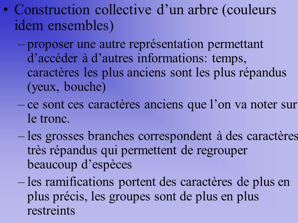 Construction collective dun arbre (couleurs idem ensembles) –proposer une autre représentation permettant daccéder à dautres informations: temps, cara