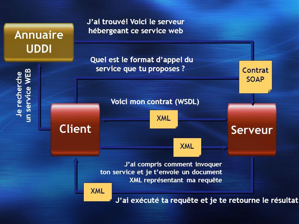 Serveur Jai trouvé! Voici le serveur hébergeant ce service web Quel est le format dappel du service que tu proposes ? Je recherche un service WEB Clie