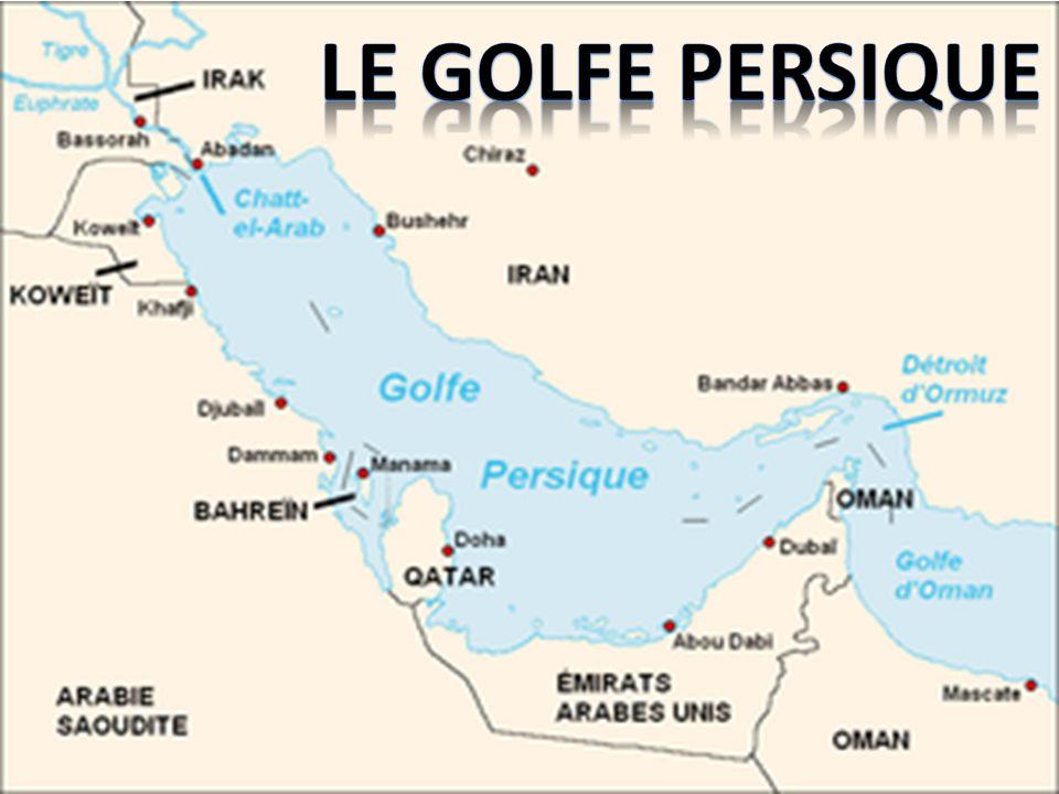 Riches parties du golfe. Milieu marin. Le Côté Riche