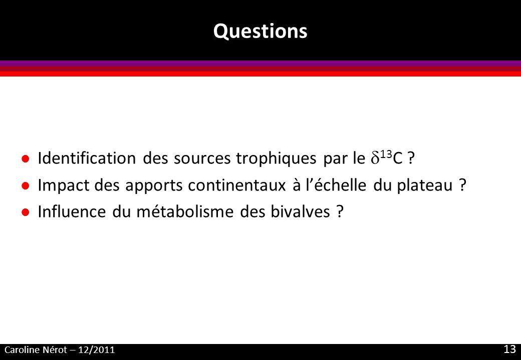 Caroline Nérot – 12/2011 13 Questions l Identification des sources trophiques par le 13 C ? l Impact des apports continentaux à léchelle du plateau ?