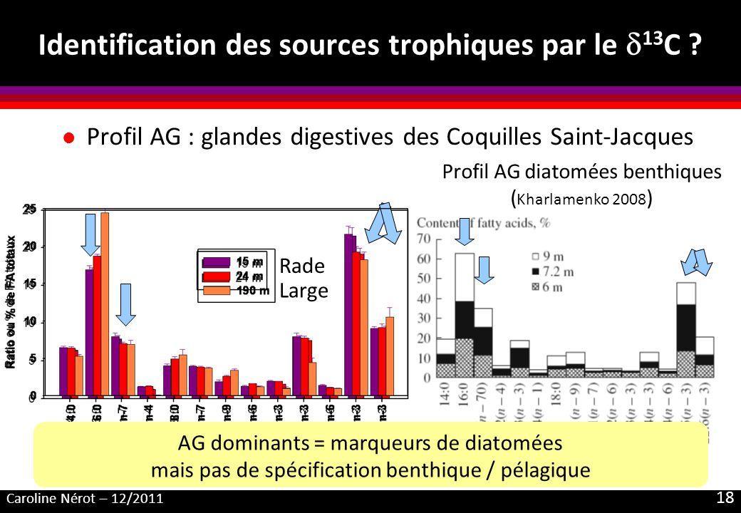 Caroline Nérot – 12/2011 18 Identification des sources trophiques par le 13 C ? Profil AG diatomées benthiques ( Kharlamenko 2008 ) l Profil AG : glan