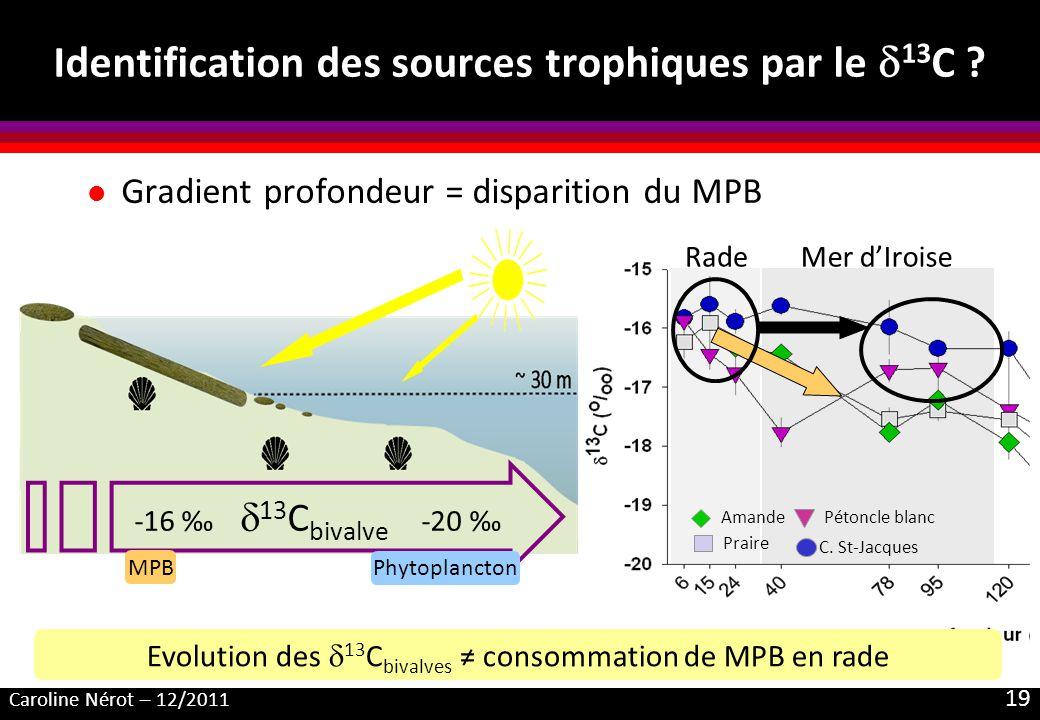 Caroline Nérot – 12/2011 19 Identification des sources trophiques par le 13 C ? l Gradient profondeur = disparition du MPB RadeMer dIroise Evolution d