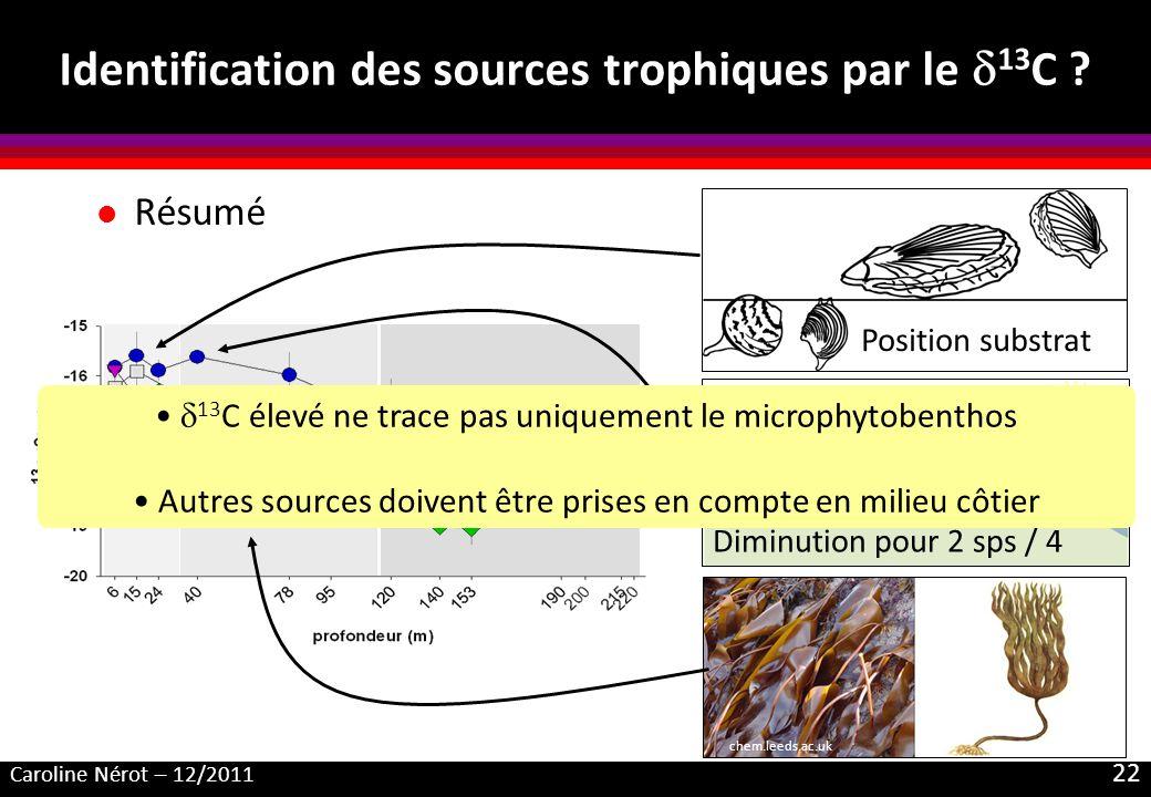 Caroline Nérot – 12/2011 22 Identification des sources trophiques par le 13 C .