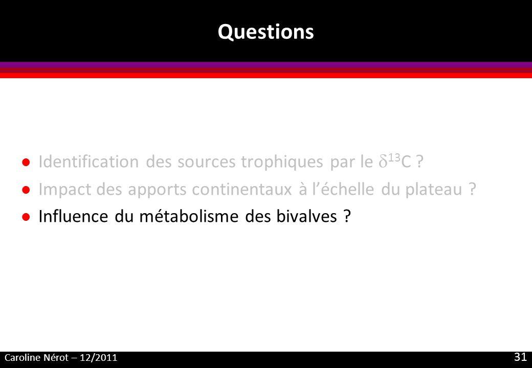 Caroline Nérot – 12/2011 31 Questions l Identification des sources trophiques par le 13 C ? l Impact des apports continentaux à léchelle du plateau ?