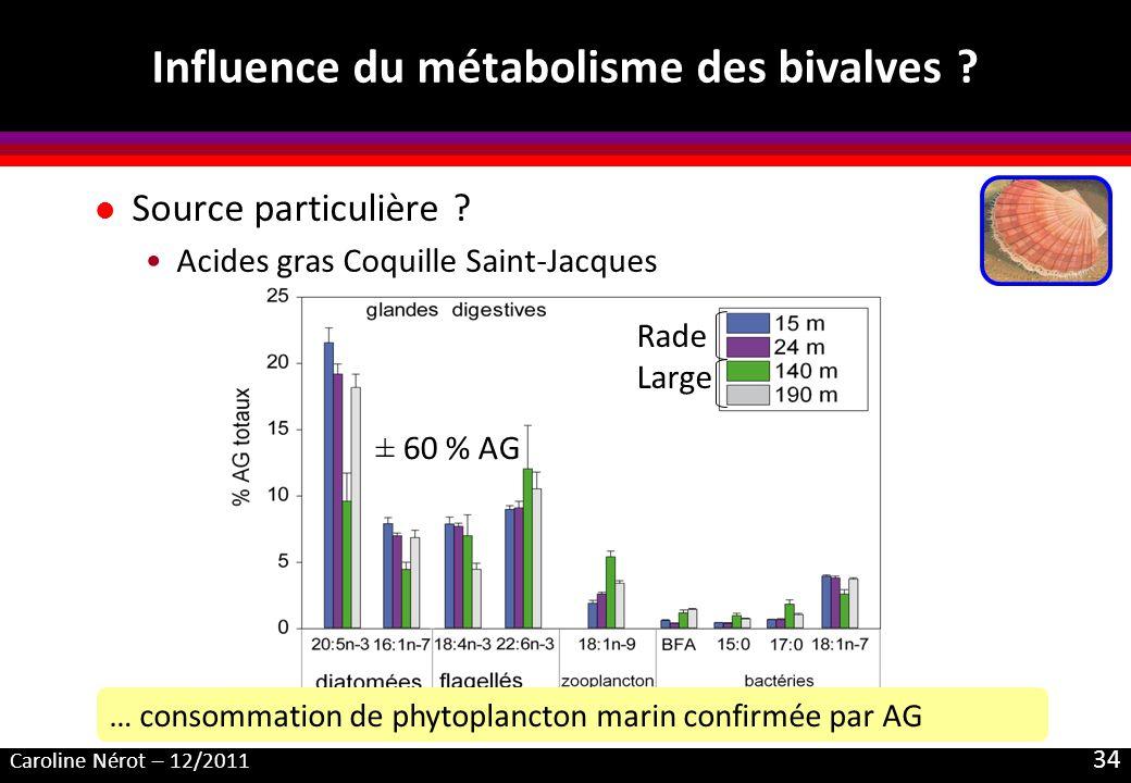 Caroline Nérot – 12/2011 34 Influence du métabolisme des bivalves ? l Source particulière ? Acides gras Coquille Saint-Jacques … consommation de phyto