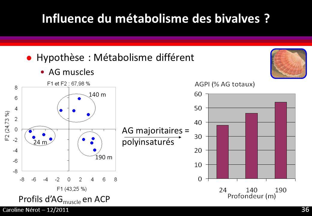 Caroline Nérot – 12/2011 36 Influence du métabolisme des bivalves ? l Hypothèse : Métabolisme différent AG muscles AG majoritaires = polyinsaturés Pro
