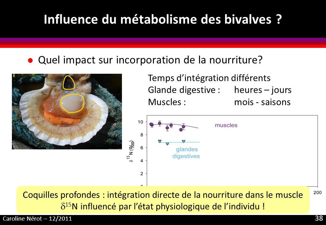 Caroline Nérot – 12/2011 38 Influence du métabolisme des bivalves ? l Quel impact sur incorporation de la nourriture? Temps dintégration différents Gl