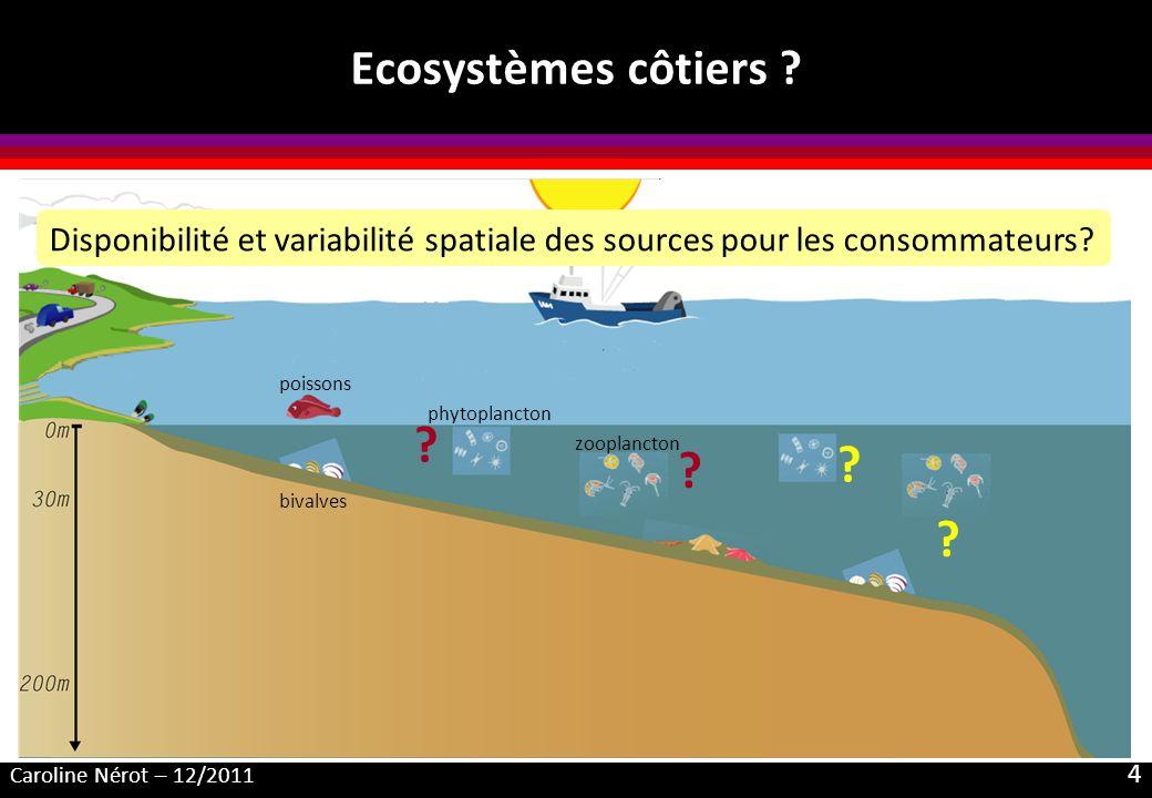 Caroline Nérot – 12/2011 4 Ecosystèmes côtiers ? bivalves phytoplancton zooplancton poissons ? Disponibilité et variabilité spatiale des sources pour
