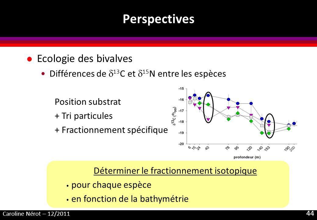 Caroline Nérot – 12/2011 44 Perspectives Déterminer le fractionnement isotopique pour chaque espèce en fonction de la bathymétrie l Ecologie des bival