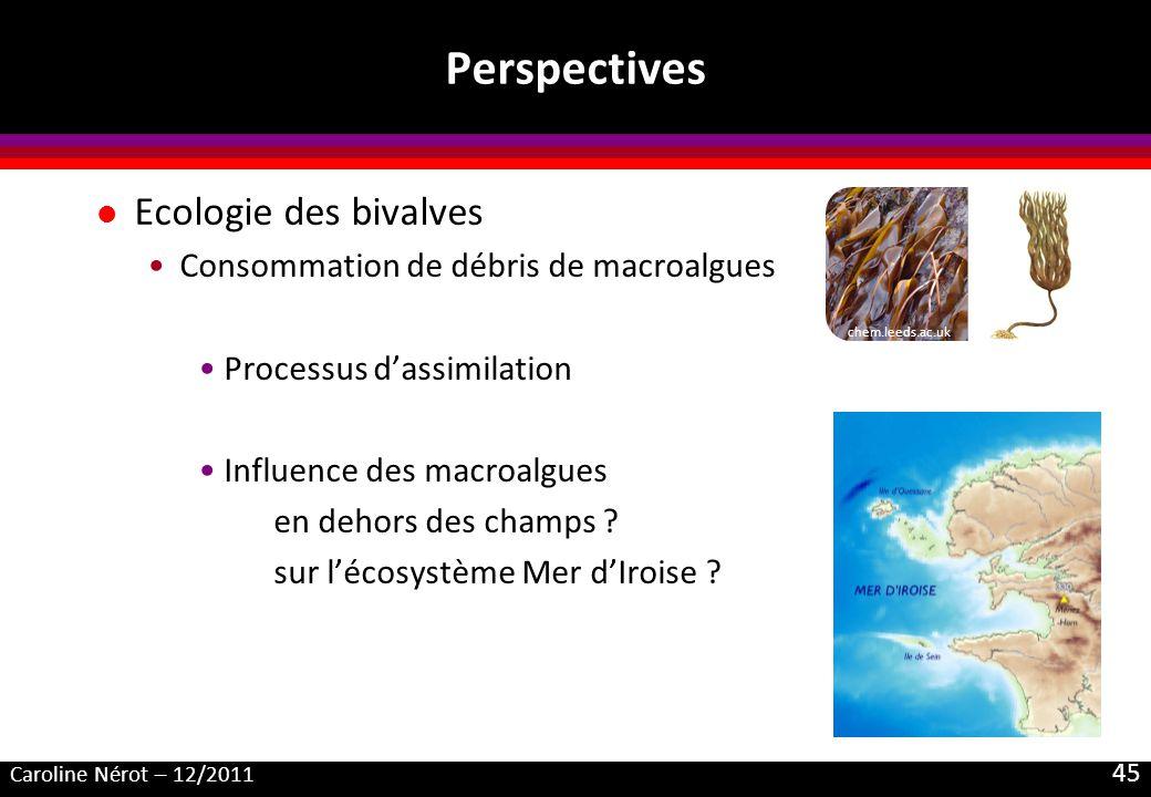 Caroline Nérot – 12/2011 45 Perspectives l Ecologie des bivalves Consommation de débris de macroalgues Processus dassimilation Influence des macroalgues en dehors des champs .