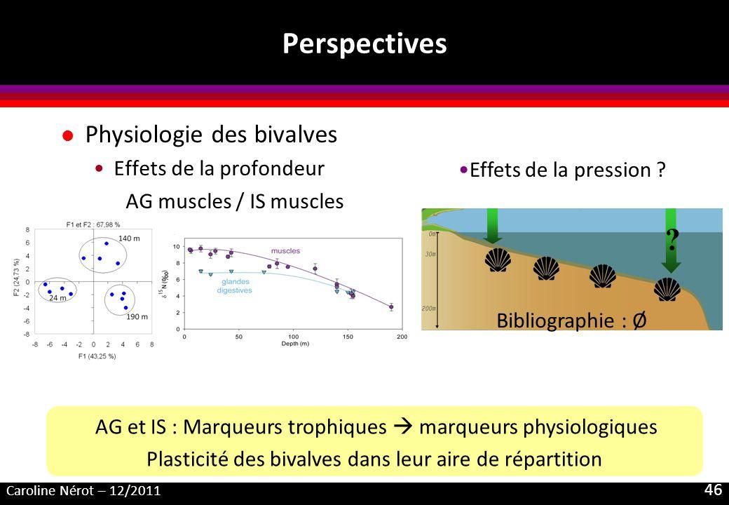 Caroline Nérot – 12/2011 46 Perspectives l Physiologie des bivalves Effets de la profondeur AG muscles / IS muscles AG et IS : Marqueurs trophiques ma