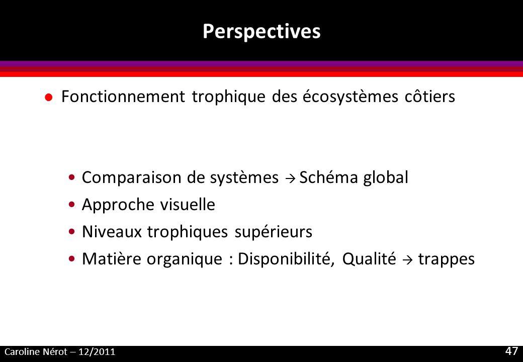 Caroline Nérot – 12/2011 47 Perspectives l Fonctionnement trophique des écosystèmes côtiers Comparaison de systèmes Schéma global Approche visuelle Niveaux trophiques supérieurs Matière organique : Disponibilité, Qualité trappes