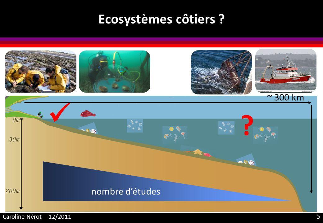 Caroline Nérot – 12/2011 6 Objectif de la thèse Etudier le fonctionnement trophique dun écosystème côtier à large échelle spatiale Réseau trophique benthique : origine de la matière organique incorporée emprise spatiale de linfluence des apports continentaux Focus sur les bivalves, consommateurs primaires
