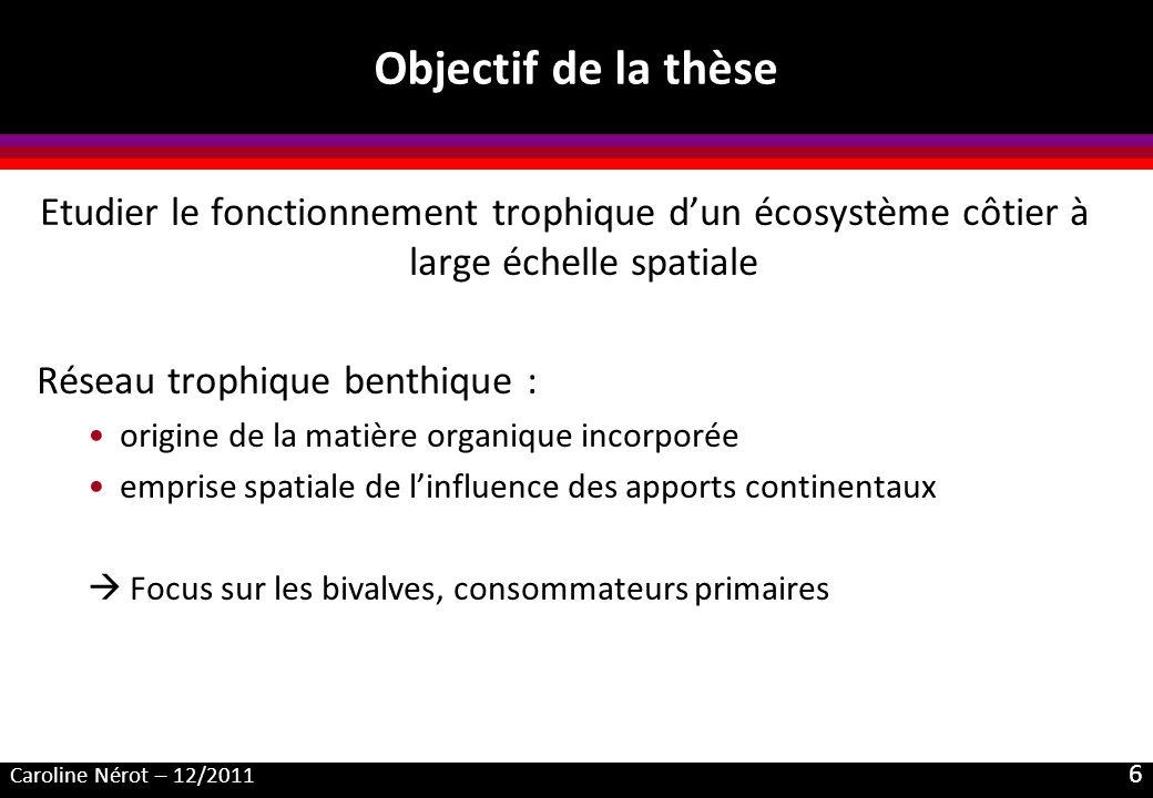 Caroline Nérot – 12/2011 6 Objectif de la thèse Etudier le fonctionnement trophique dun écosystème côtier à large échelle spatiale Réseau trophique be
