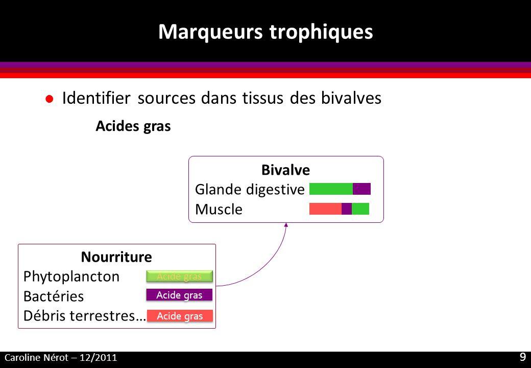 Caroline Nérot – 12/2011 9 Marqueurs trophiques l Identifier sources dans tissus des bivalves Acides gras Acide gras Nourriture Phytoplancton Bactérie