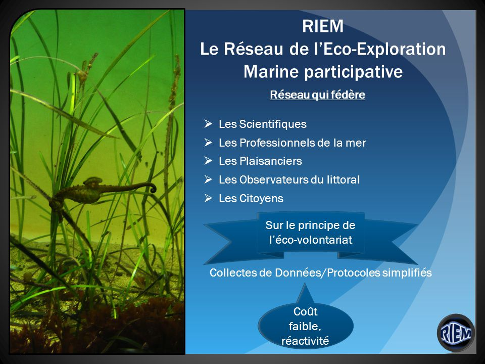 RIEM Le Réseau de lEco-Exploration Marine participative Réseau qui fédère Les Scientifiques Les Professionnels de la mer Les Plaisanciers Les Observat