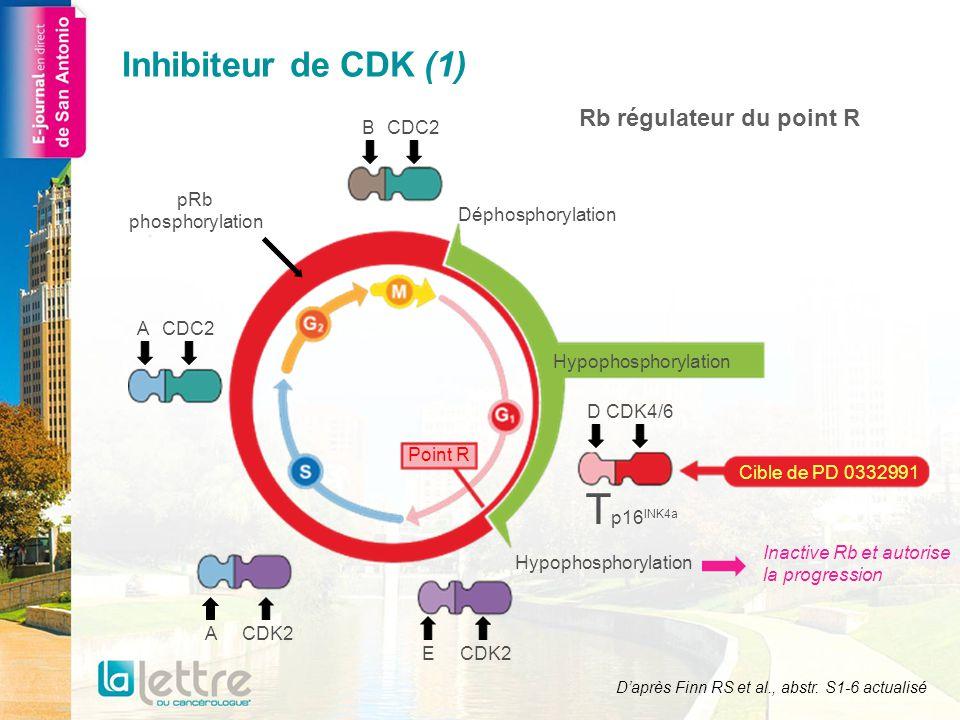 Schéma de la phase II PD 0332991 125 mg/j a + létrozole 2,5 mg/j Létrozole 2,5 mg/j Cancer du sein RE+, HER2- 1:1 PD 0332991 125 mg/j a + létrozole 2,5 mg/j Létrozole 2,5 mg/j Cancer du sein RE+, HER2- avec amplification de CCND1 ou perte de p16 1:1 Première partie (n = 66) Deuxième partie (n = 99) a Schéma dadministration 3/1 Daprès Finn RS et al., abstr.