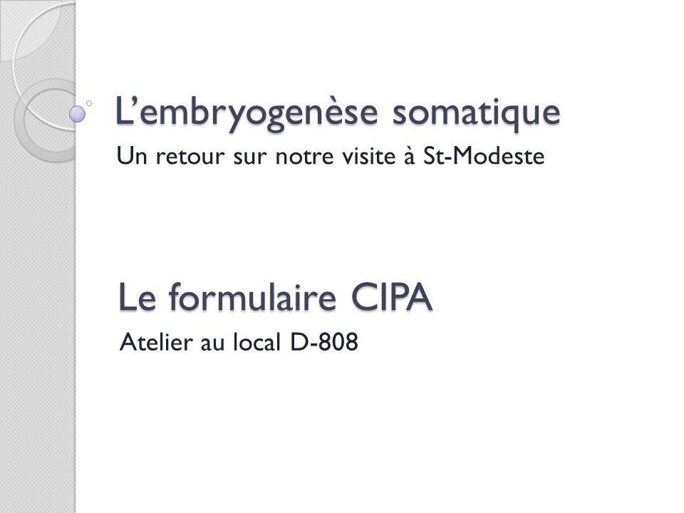 Lembryogenèse somatique Un retour sur notre visite à St-Modeste Le formulaire CIPA Atelier au local D-808
