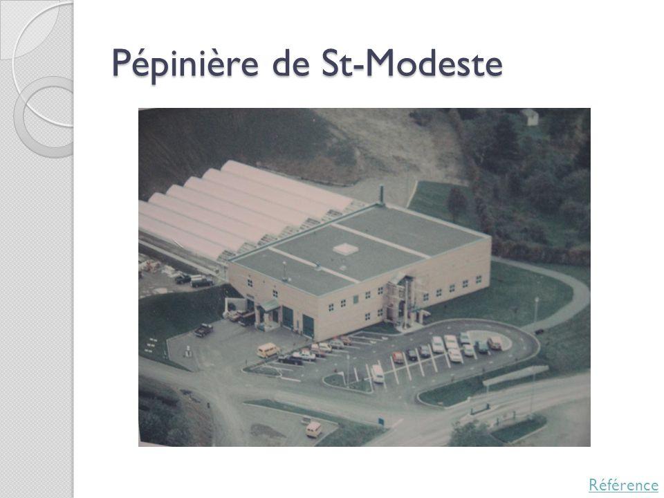 Pépinière de St-Modeste Référence