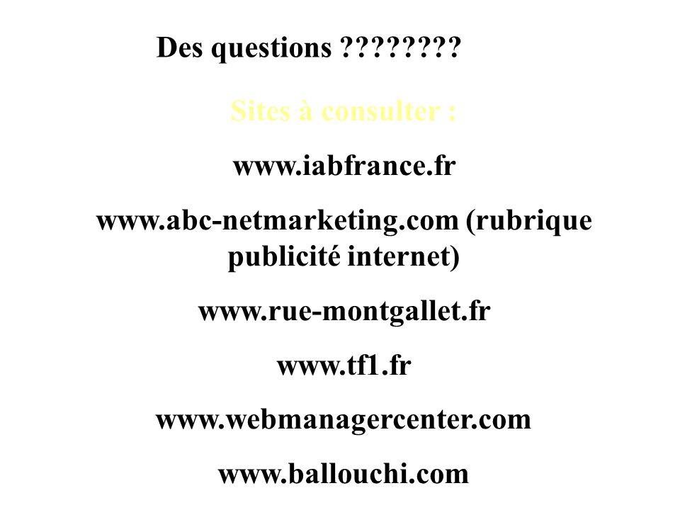 Des questions ???????? Sites à consulter : www.iabfrance.fr www.abc-netmarketing.com (rubrique publicité internet) www.rue-montgallet.fr www.tf1.fr ww