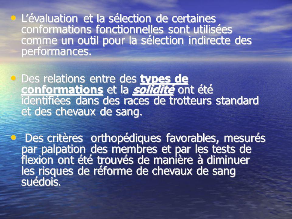 Lévaluation et la sélection de certaines conformations fonctionnelles sont utilisées comme un outil pour la sélection indirecte des performances.