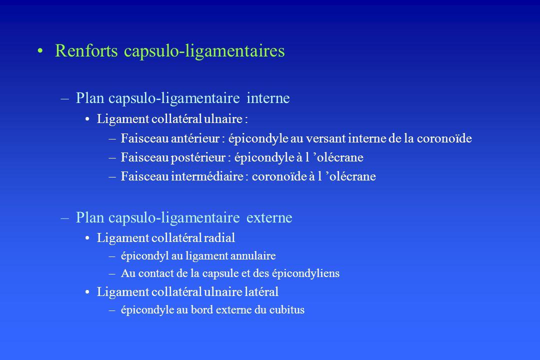 Renforts capsulo-ligamentaires –Plan capsulo-ligamentaire interne Ligament collatéral ulnaire : –Faisceau antérieur : épicondyle au versant interne de la coronoïde –Faisceau postérieur : épicondyle à l olécrane –Faisceau intermédiaire : coronoïde à l olécrane –Plan capsulo-ligamentaire externe Ligament collatéral radial –épicondyl au ligament annulaire –Au contact de la capsule et des épicondyliens Ligament collatéral ulnaire latéral –épicondyle au bord externe du cubitus