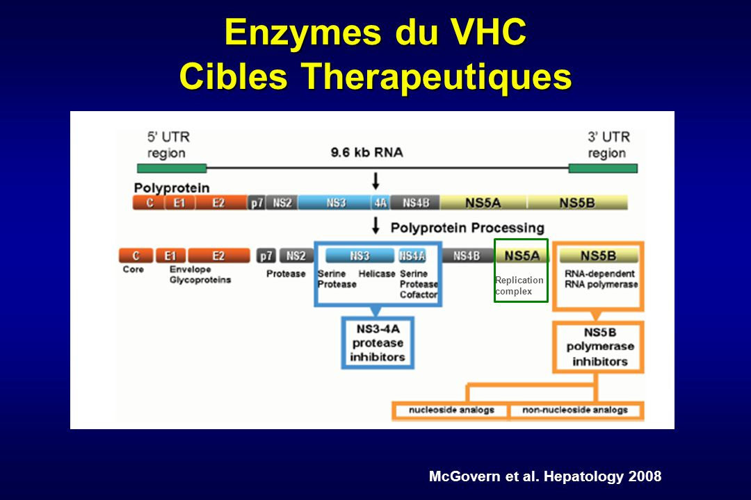 Enzymes du VHC Cibles Therapeutiques McGovern et al. Hepatology 2008 Replication complex